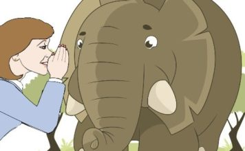 Female Animation Whispering to An Elephant